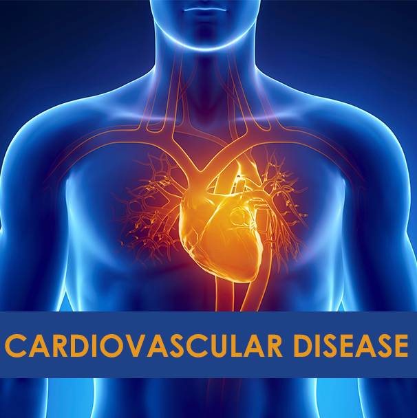 CARDIOVASCULAR DISEASE DIAGNOSIS SYSTEM USING SUBTRACTIVE CLUSTERING AND ARTIFICIAL NEURAL NETWORK - CodeMint Mint for Sale